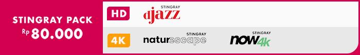 Stringray Festival 4k
